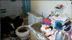 hoarder bathroom, addict, nutjob