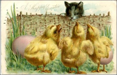 chicks, cat, Easter, devour, Scheiss Weekly