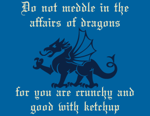 do-not-meddle-in-the-affairs-of-dragons